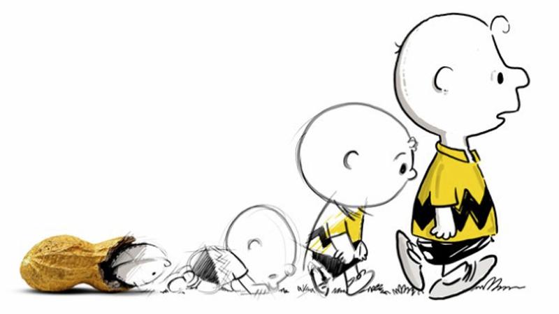 Fat Content In Peanuts 63
