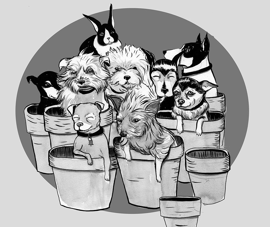 Dogs in Pot by Nicole Georges