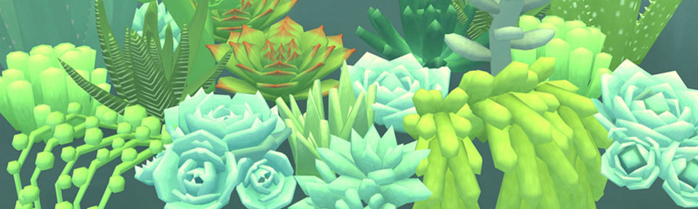 There 39 s a game where you just take care of succulents for How do you take care of succulents